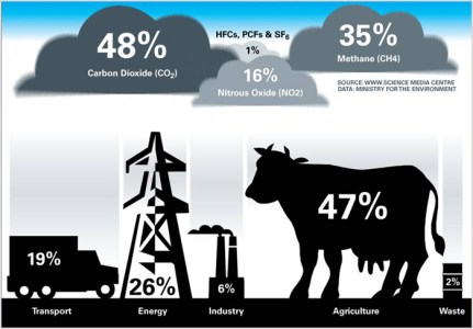infographic on cattle farming and co2 emissions