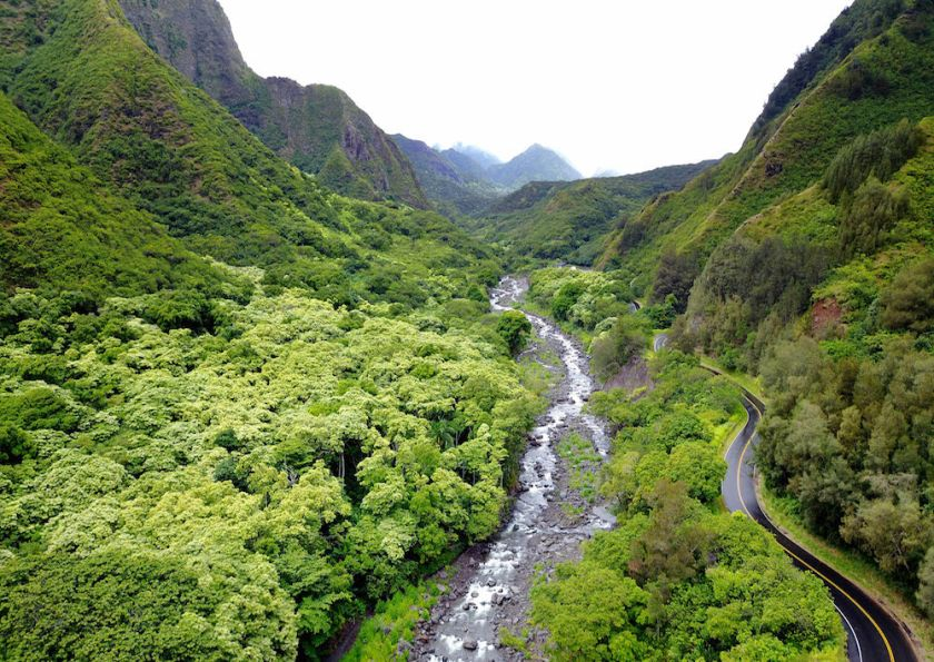 beautiful green valley with a river in maui by Maui Jeff Beige