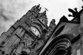 Lizardy gargoyle, Quito