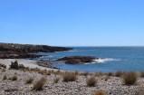 Penguin colony, Cabo dos Bahias, Argentina