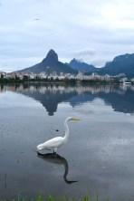 Rodrigo de Freitas lagoon, Rio