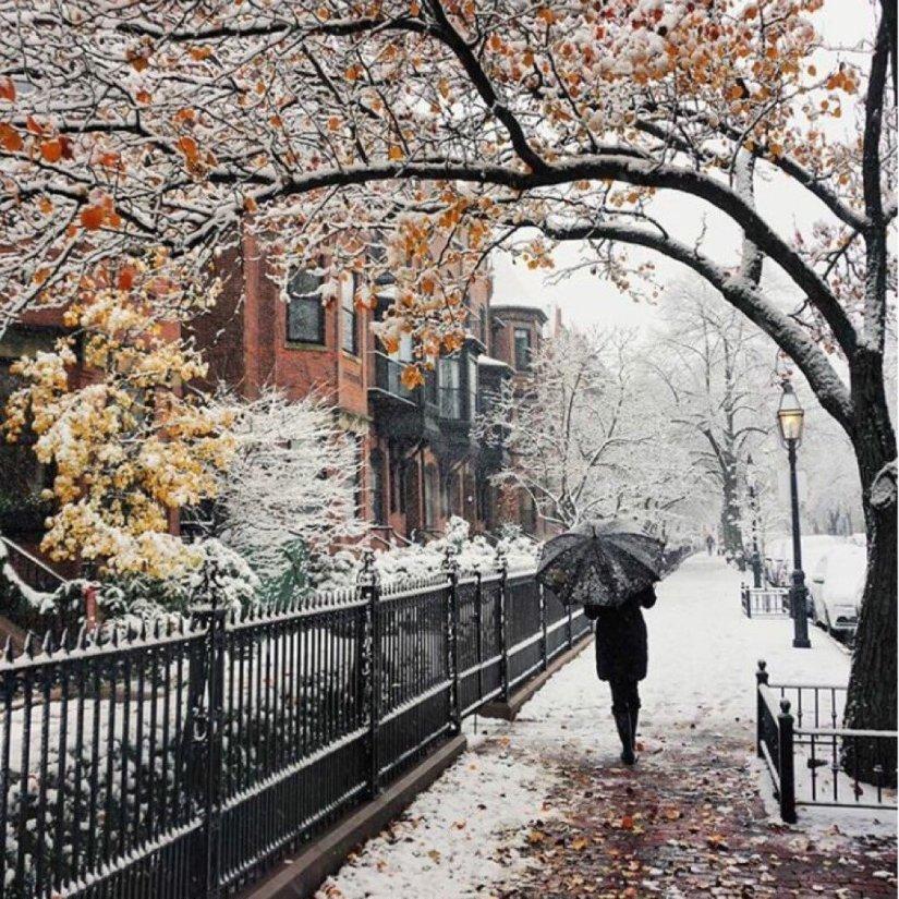 severelymagicalthings.com/magic-fall-snow-walk-photo/
