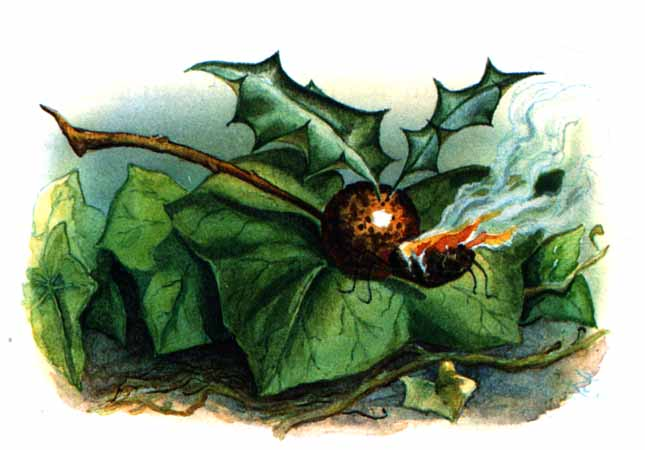 A Snap-Dragon-Fly http://classics-illustrated.com/alice/images/BERRY.JPG