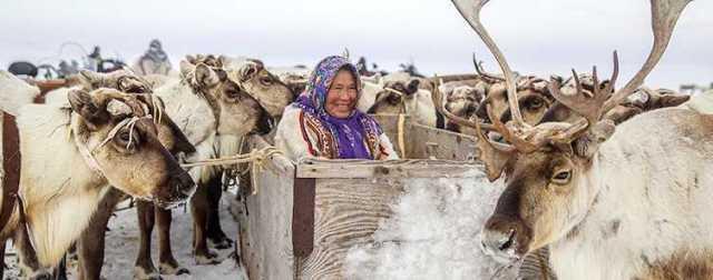 Северная пенсия для коренных народов