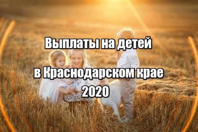 выплаты на детей в Краснодарском крае
