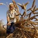 Пенсии жителям сельской местности