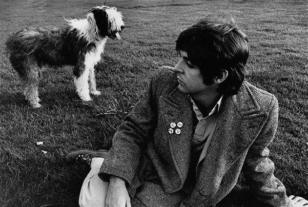 """The Beatles'ın """"A Day in the Life"""" şarkısının köpek dostları için ayrı bir anlamı vardır. Paul McCartney sevgili dostu Shetland Çoban Köpeğiyle paylaştığı mutluluğu ifade için müziğe ultrasonik köpek ıslığı eklemiştir http://sevgilikopegim.com/2014/11/14/coban-kopeginin-the-beatles-sarkisi/"""