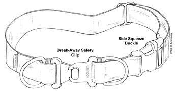 Genel Amaçlı Boyun Tasma Modelleri Köpeğin yaşam alanı ve içinde bulunduğu aktivitelere uygun, boyun tasmalarından kaynaklı kazalara karşı güvenlik önlemleri içeren boyun tasması, ideal tasmadır. http://sevgilikopegim.com/2014/11/22/dogru-tasma-nasilsecilir-3-genel-amacli-boyun-tasmalari/