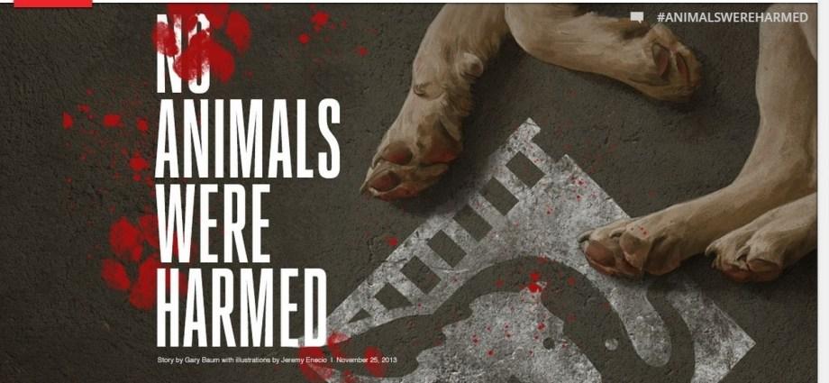 Bu Filmde Hayvanlar Zarar Görmemiştir! http://sevgilikopegim.com/2015/02/13/bu-fimlerde-hayvanlar-zarar-gormustur/