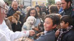 Bendición de mascotas en Puerta Nueva