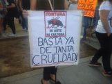 manifestación antitaurina11