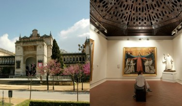 collage museos