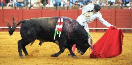 Alejandro Fermín_Sevilla2015