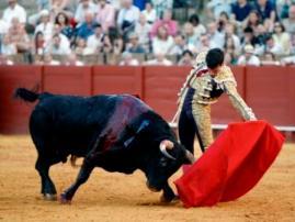 Campos_Sevilla15614