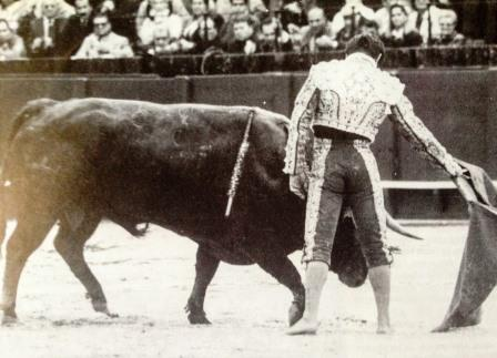 Chamaco hijo1993