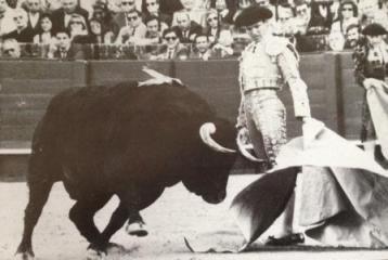 Espartaco 1993