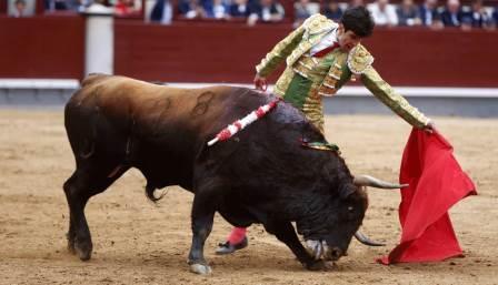 Lopez Simón_Madrid25