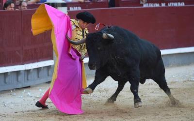 Madrid: 31ª de San Isidro – La vida del toro, en una pancarta