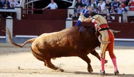 Padilla_Madrid26
