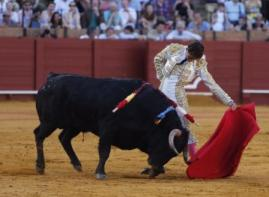 Posada_Sevilla 2015