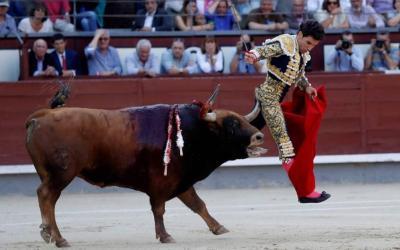 Madrid: 22ª de San Isidro – ¡Ese pitón, por favor!