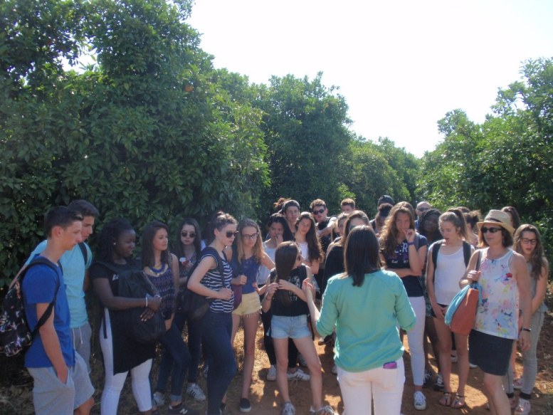 The dream made real of the French students in Ave Maria Farm