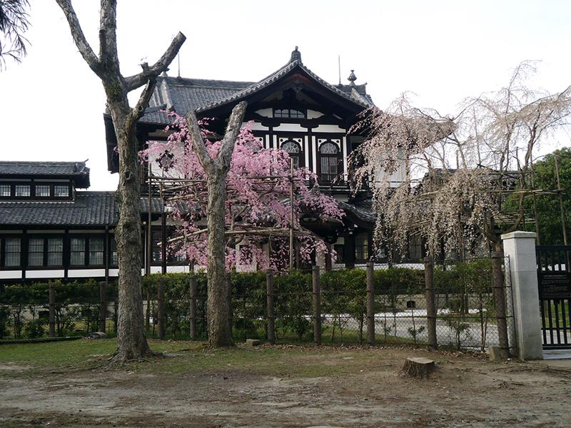 Museu de arte de Nara