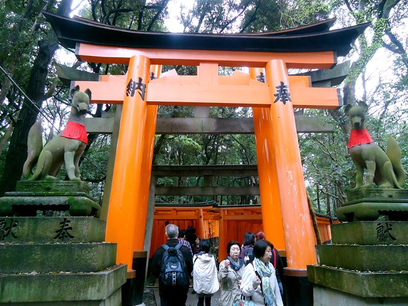 corredor de torii