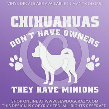 Funny Chihuahua Car Window Stickers