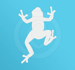Frog Vinyl Decal for Car
