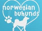 I Love Norwegian Buhunds Decals