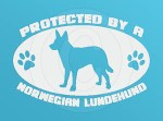 Protected by a Norwegian Lundehund Decal