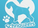 I Love Schnauzers Vinyl Sticker