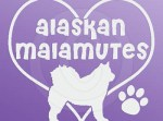 I Love Alaskan Malamutes Stickers