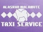 Malamute Taxi Decal