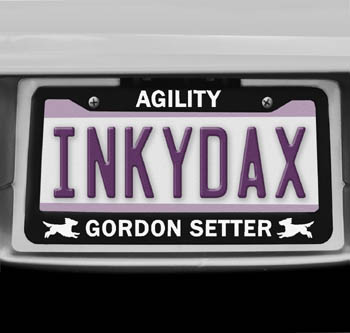 Gordon Setter Agility License Plate Frame