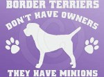 Funny Border Terrier Decal