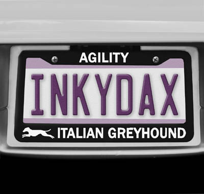 Italian Greyhound Agility License Plate Frame