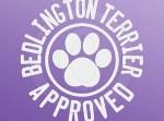 Bedlington Terrier Decal