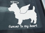 Angel Australian Terrier Decal