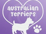 I Love Australian Terriers Decals
