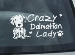 Crazy Dalmatian Lady Decal
