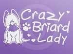 Crazy Briard Lady Decals