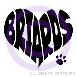 Briard Shirts