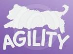 Agility Briard Decal