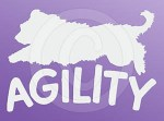 Agility Briard Decal