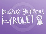 Brussels Griffons Rule Stickers