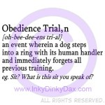 Dog Obedience Shirts