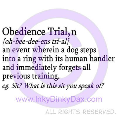 Dog Obedience Shirts