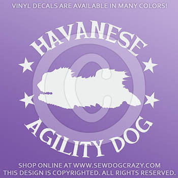 Havanese Agility Decals